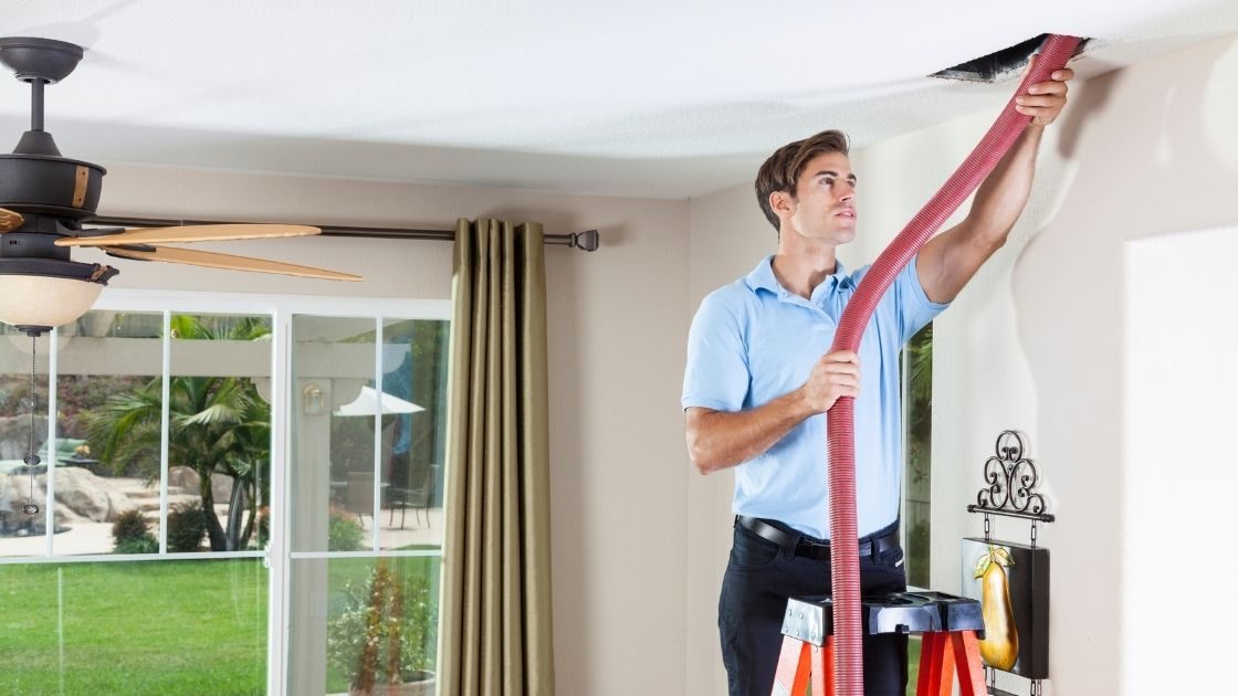 Know More about the Various Types of Mold Which Found in Air Ducts